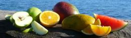 Fruit on Rock.JPG