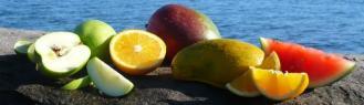 Fruit on Rock.JPG